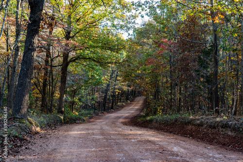 Fototapeta Beautiful Missouri Backroads in Fall
