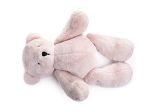 Cute Teddy Bear Isolated On White. Child's Toy