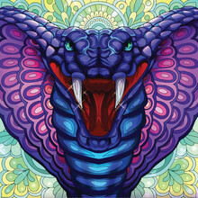 Blue And Purple Snake With Mou...