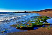 El Medano, Rocks And Puddles At Low Tide