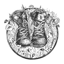 Old Hiking Boots On Wildflower