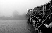 Black And White Foggy Photos O...