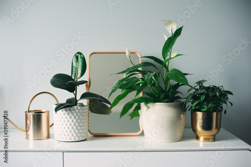 trendy modern scandinavian interior in white and grey tones decorated with houseplants and candles Fototapete