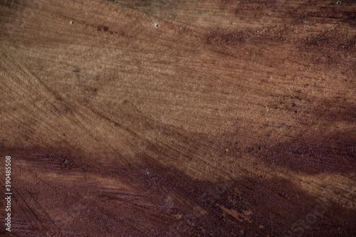 Tela photo of tree texture, showing tree bark