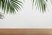 Green Palm Leaves By The Wall
