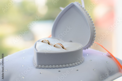 Fotografie, Obraz two gold wedding rings lie in a white box