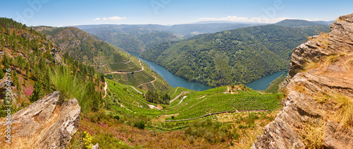 Ribeira sacra terrace vineyards and sil river in Galicia, Spain