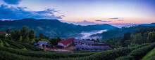 Panorama Wiew Of House In The Middle Of A Tea Plantation On The Mountain At 101 Tea Plantation At Sunrise At Doi Mae Salong, Chiang Rai Province, Thailand.