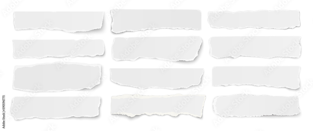 Fototapeta Horizontal set of torn long pieces of paper isolated on a white background.