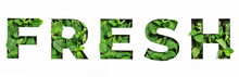 Lettering Of English Word Fresh Made Of Green Natural Leaves And Cut Paper Isolated On White. Menthol Font