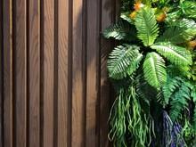 Old Grunge Big Wood Texture Wi...