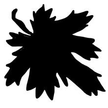 Decorative Silhouette Of Maple Leaf
