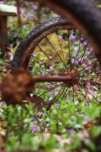 Rusty Wagon Wheels