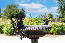 A Black Cast Iron Fountain In The Garden Surrounded By Pink And Yellow Roses With Lush Green Leaves At Huntington Library And Botanical Gardens In San Marino, California
