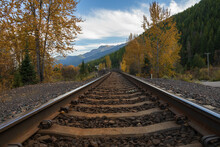 Railroad Tracks Thru The Forest With Mountain Background