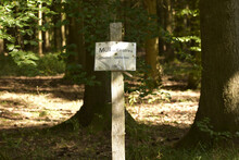 """Closeup Of An Old Sign In A Forest That Says """"littering Is Prohibited"""" In German"""