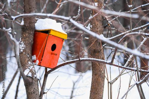Birdhouse on a tree Fotobehang