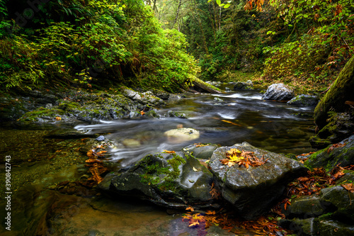 Limestone Box Canyon, Nitinat, Vancouver Island, BC Canada