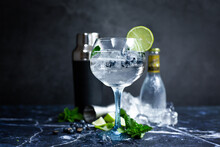 Glass Of Gin And Tonic With Mint, Lime Wedges And Ice On A Grey Background