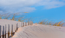 Sand Dunes And Fence