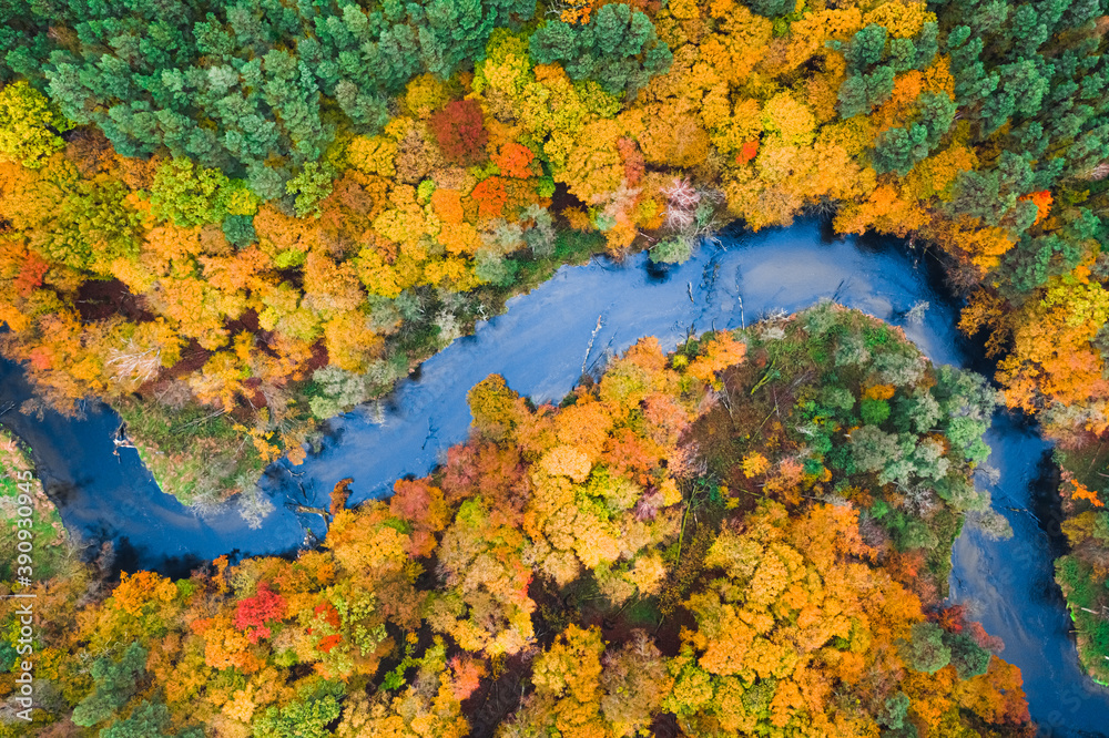 Fototapeta Stunning view of colorful autumn forest and blue river, Poland