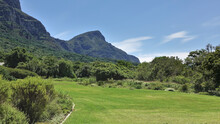 The Lawn With Green Grass Is Surrounded By Dense Bushes. A Picturesque Mountain Range Against The Blue Sky. Glade In The Botanical Garden. Cape Town. South Africa.