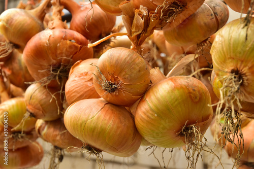Healfhy onion vegetable onions Fotobehang