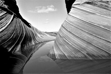 The Wave #1 In Black And White...