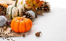 Spread Of Pumpkins And Pinecones With Space For Your Text - Autumn Themed Background