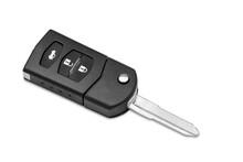 Car Key Ring Isolated On White Background