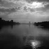Fototapeta Kwiaty - Foggy View East London Black and White