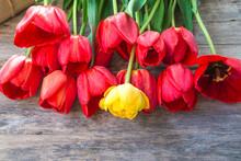 Beautiful Bunch Of Red Tulips ...