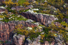 Rock, Mountain Slope Covered W...