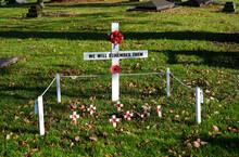 Poppy Cross, Remembrance Day Display In Crediton, Devon November 2 2020
