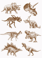 Graphical Vintage Set Of Dinosaurs , Sepia Background, Vector Illustration