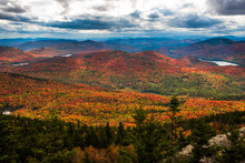 Adirondack Forest At Fall View From Crane Mountain