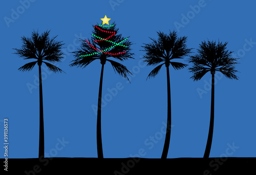 A palm tree is decorated for Christmas on a beach in a tropical climate. Strings of lights glow in the night.