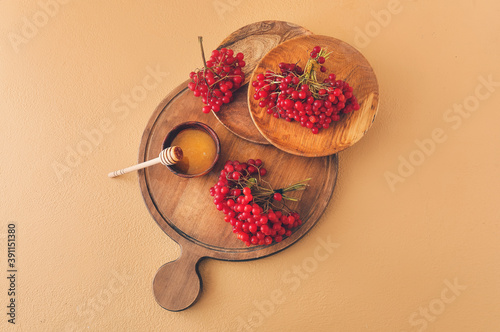 Canvas Print Board with fresh viburnum berries and honey on color background