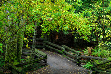 Pathway Surrounded By Wooden Fences And Greenery In A Park Under The Sunlight In Victoria, Canada