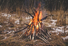 Bonfire In The Forest. Hiking In The Wild Forest Concept. Late Fall