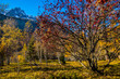 landscape of the french alps in autumn