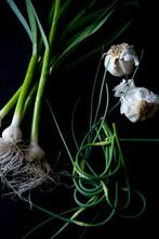 Green Garlic, Scales And Garlic Against Black Background