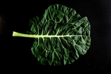 Overhead View Of Cabbage Leaf ...