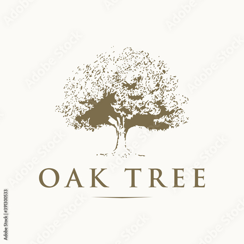 Canvas-taulu Oak tree logo design