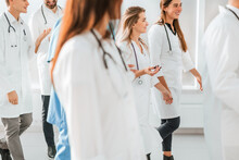 Large Group Of Medical Profess...
