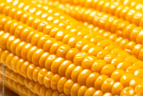 Corn background or texture Canvas