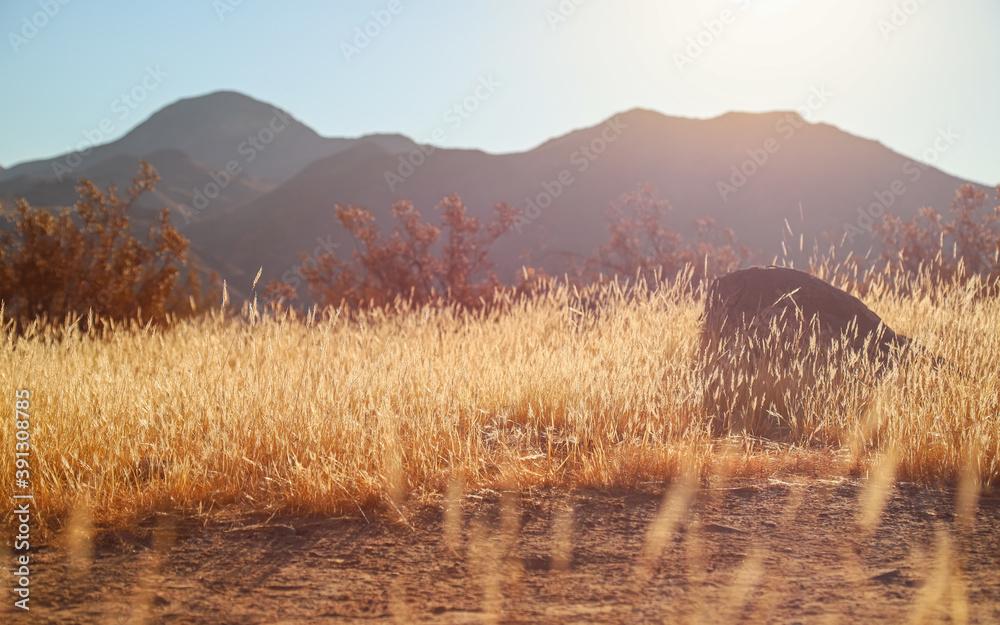 Fototapeta Golden Sunrise Desert Mountain Meadow Background