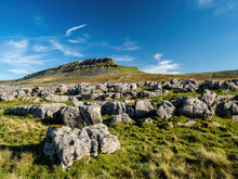 Limestone Outcrop Next To The Mountain Of Pen-y-ghent In The Yorkshire Dales National Park. At 2,277 Feet, The Mountain Is One Of The 'Three Peaks Of Yorkshire'.
