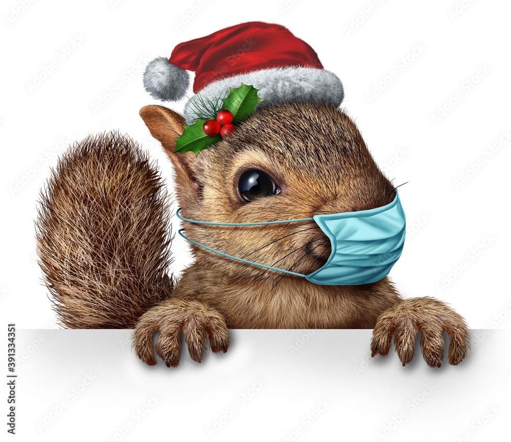 Fototapeta Healthy Holiday Squirrel