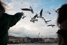 Friends Feeding Seagulls An Th...